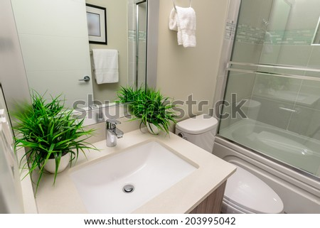 Interior design of a luxury bathroom, washroom with washbasin (sink) and decorative pots with plants on the counter. - stock photo