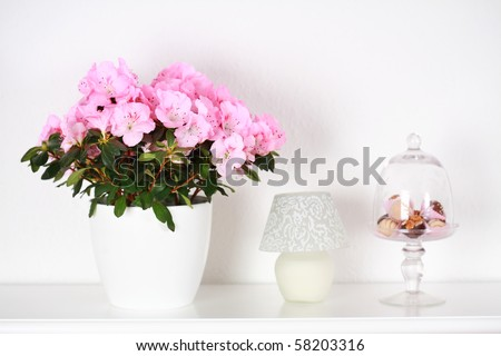 Interior detail with different flowers in white tone - stock photo