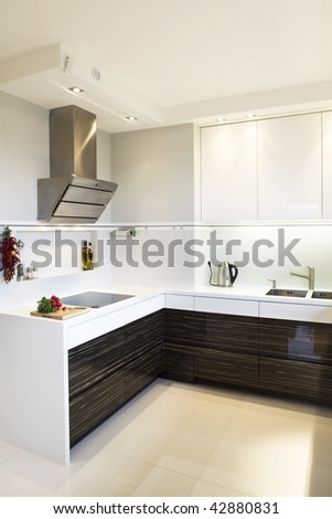 Interior details of luxurious modern kitchen