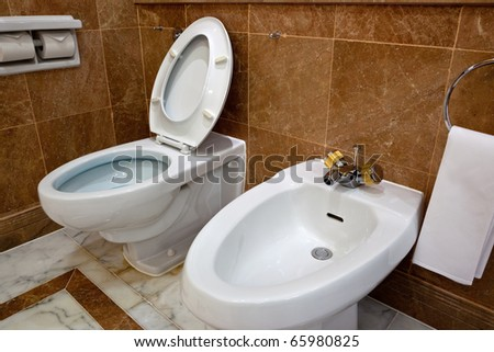 Interior of a bathroom showing the toilet bowl and bidet