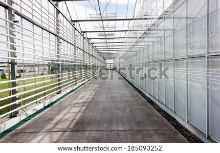 Interior of a greenhouse - stock photo