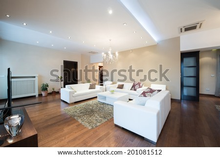 Interior of a modern spacious living room - stock photo