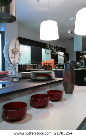 interior of the modern kitchen with red flowers