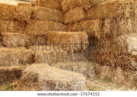 Internal side of a barn - stock photo