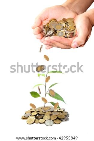 Invest money concept - stock photo