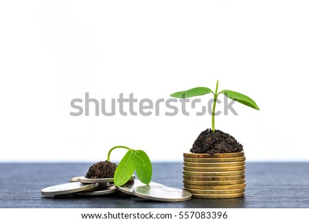 Investment concept, Coins graph stock market on wood background.