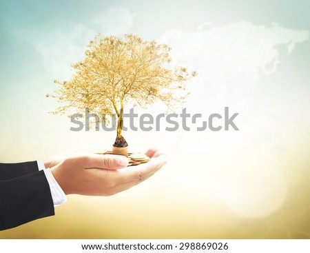 Investment concept. ROI Insurred Idea Market Seed Bank CSR Trust Wealth Day Debt Food Hope Nature Dollar Seed Index Charity Treasure Safety World City Cash Grow Deposit Save Bonus Environment Preserve - stock photo