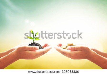 Investment concept. ROI Insurred Idea Market Seed Bank CSR Trust Wealthy Day Debt Food Hope Nature Seed Support Charity Seedling Safety World Cash Grow Future Deposit Save Bonus Two Stock Preserve - stock photo