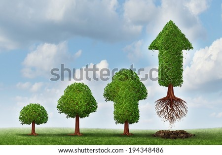 Investment success as a business concept for growing wealth as a small tree  gradually turning into a mature flying arrow plant as a financial metaphor for a successful investing strategy. - stock photo