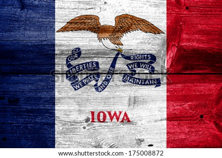 Iowa State Flag painted on old wood plank texture - stock photo