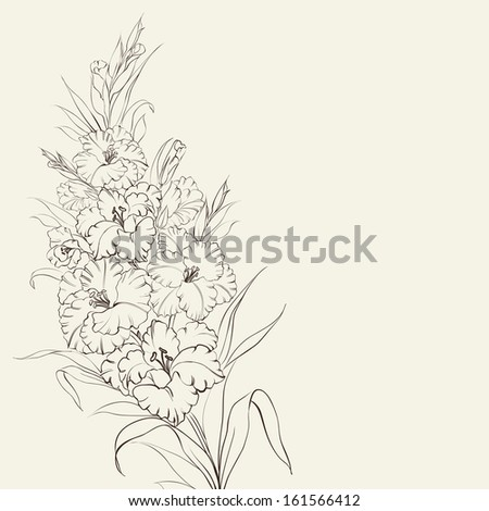 Irises flowers with text place.  illustration. - stock photo