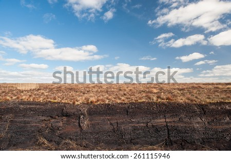 Irish peat bog  - stock photo