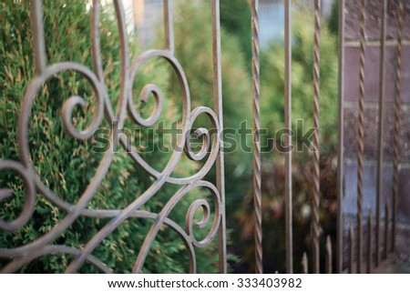Iron fence close up