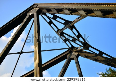 Iron Rail Bridge in the forest