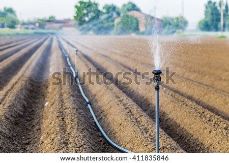 irrigation of cultivated fields with rotating sprayer - stock photo