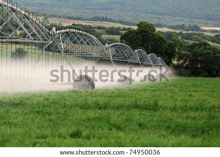 Irrigation sprinklers watering a green alfalfa field. - stock photo