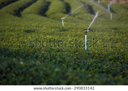 irrigation system for agriculture or garden - stock photo