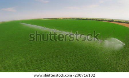 Irrigation system on a industrial farm. Irrigating beans - stock photo