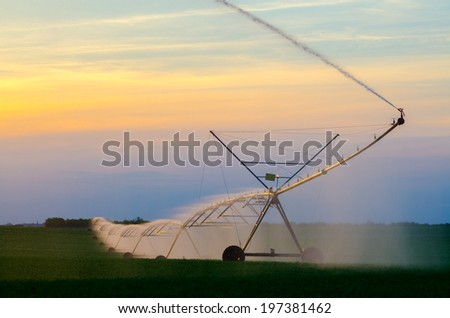 Irrigation system on the wheat field at sunset on beautiful summer day. - stock photo