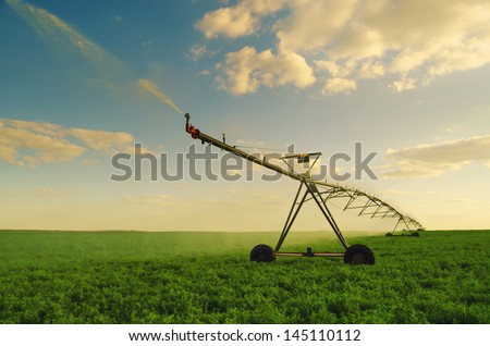 Irrigation system watering field of peas on sunny summer morning. - stock photo