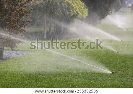 Irrigation System Watering the Trees - stock photo