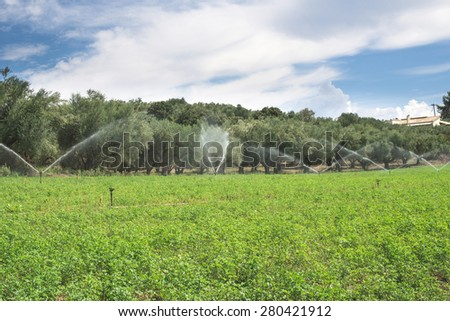 Irrigation systems. Blue sky - stock photo