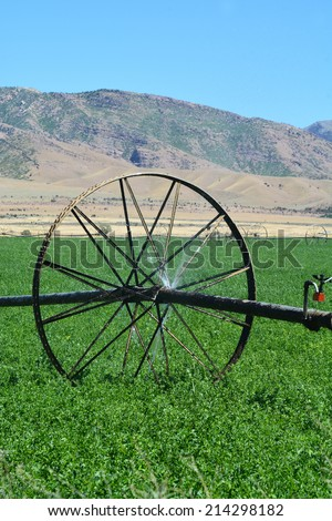 Irrigation wheel line watering a green alfalfa field. - stock photo