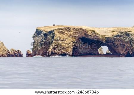 Islas Ballestas, Peru - stock photo