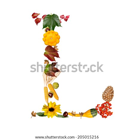 isolated Alphabet with autumn symbols Letter L