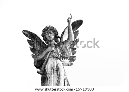 isolated angel in stone