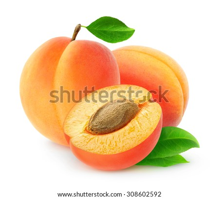 Isolated apricots. Fresh cut apricot fruits isolated on white background, with clipping path - stock photo