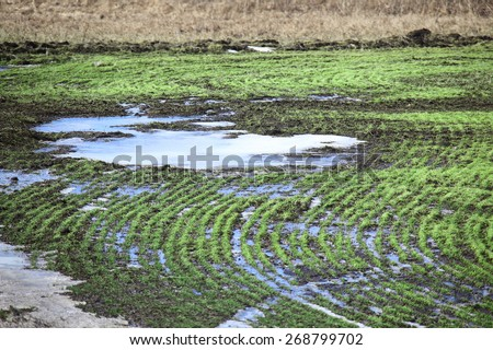 isolated arable land after the melting snow in early spring - stock photo