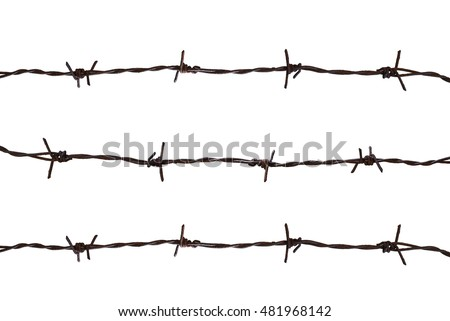 isolated barbed wire on white