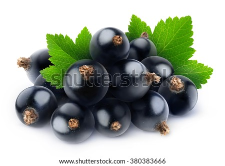 Isolated black currants. Pile of fresh black currant berries with leaf isolated on white background with clipping path - stock photo