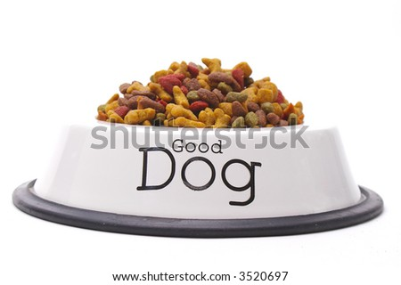 Isolated bowl of dog food for a very good dog. - stock photo