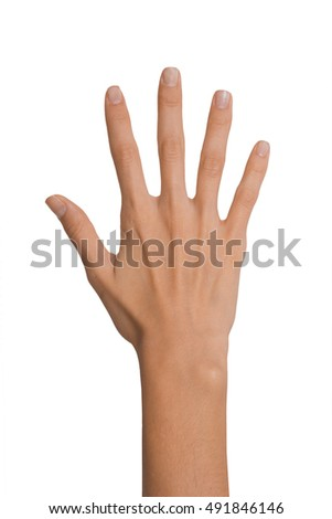 Isolated Empty open woman female hand in a position of number Five on a white background
