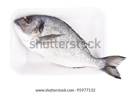 isolated fish, golden - stock photo