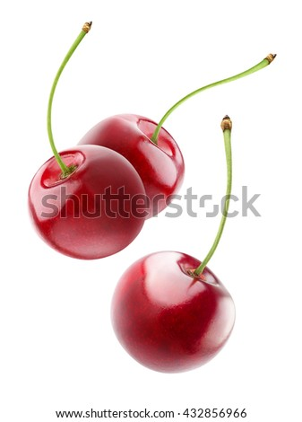 Isolated flying cherries. Three falling cherry fruits isolated on white background with clipping path - stock photo