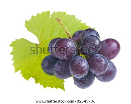Isolated fresh grapes with drops and green leaf - stock photo