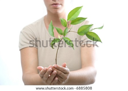 Isolated girl holding a new tree with green leaves