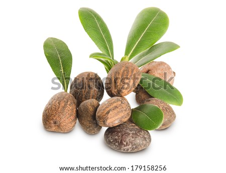 Isolated group of shea nuts with leaves - stock photo