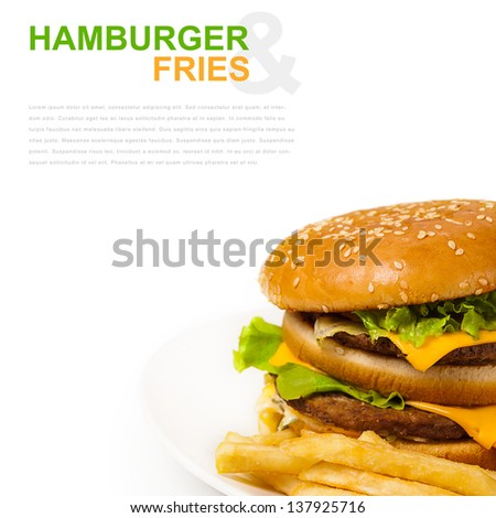 isolated hamburger and fries on plate and place for text