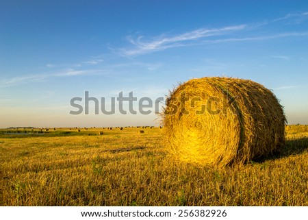 isolated hay bale on the right against a blue sky background with small hay bales in the background - stock photo