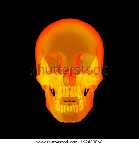 Isolated human x ray skull on black background - front view - stock photo