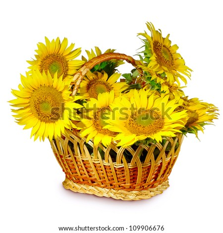 Isolated image of  basket with  sunflowers on a white background
