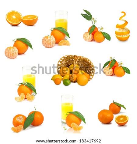 isolated image of citrus on white background - stock photo
