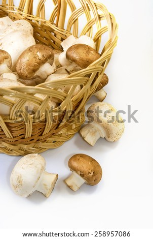 Isolated image of mushrooms in basket - stock photo