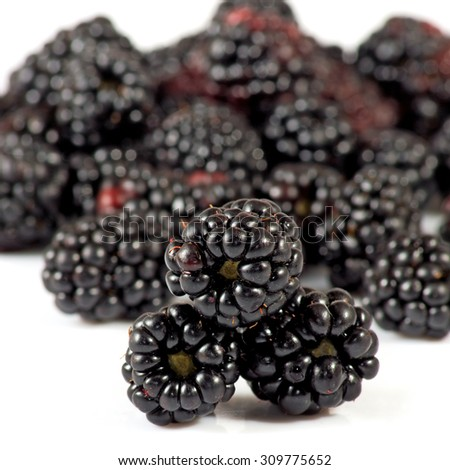 Isolated image of ripe blackberry closeup - stock photo