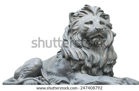 Isolated lion on white background - stock photo