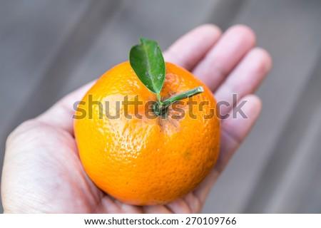 isolated man hand holding a fresh orange - stock photo